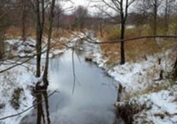 MLK Day of Service – White Oak Park & Stream Cleanup 2018